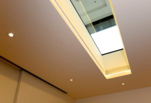 Walk-On Rooflight Surrey London